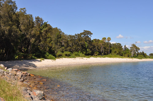 can you track an application lake macquarie city council
