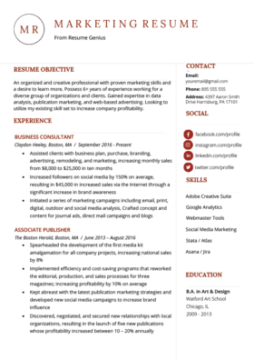 career overview sales manager application examples